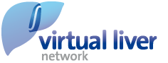 Virtual Liver Network